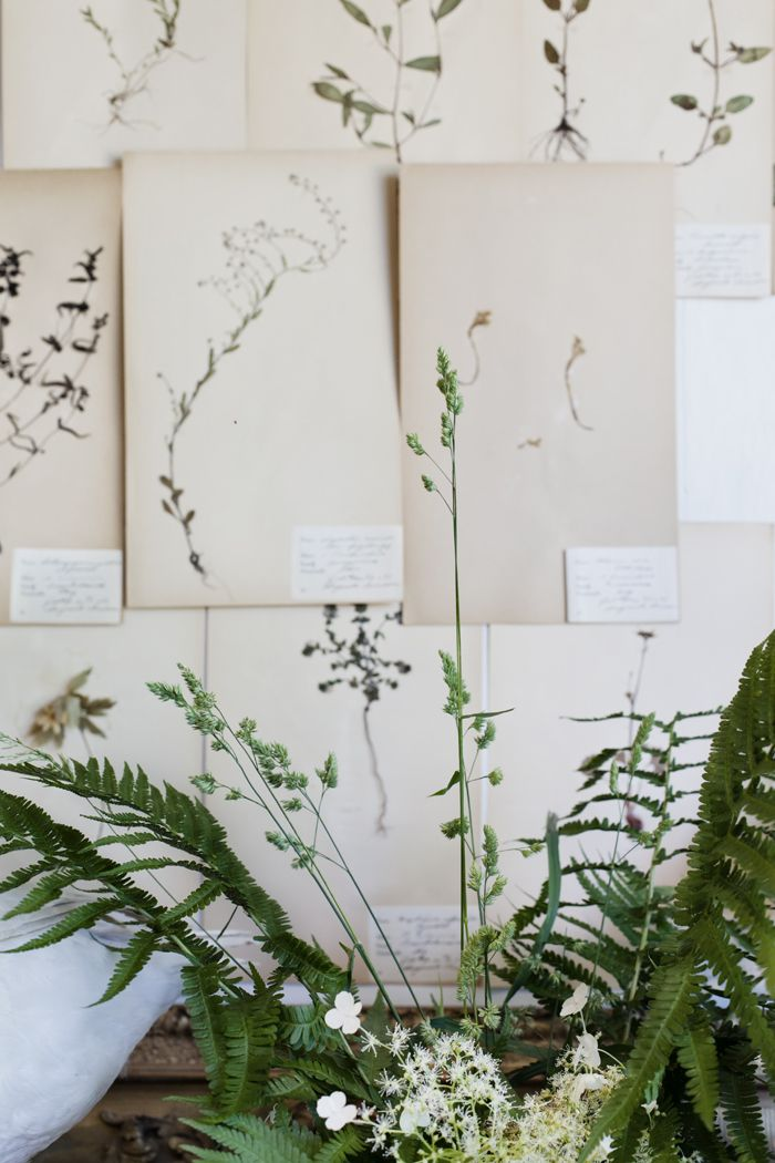 Botanical prints all over the walls