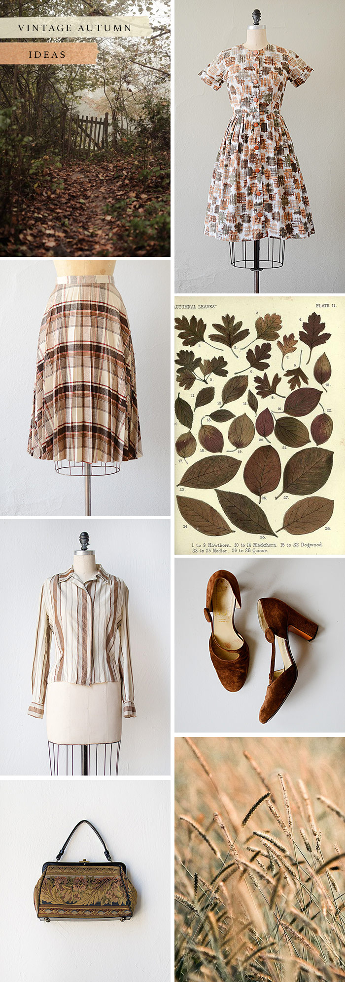 vintage-autumn-ideas