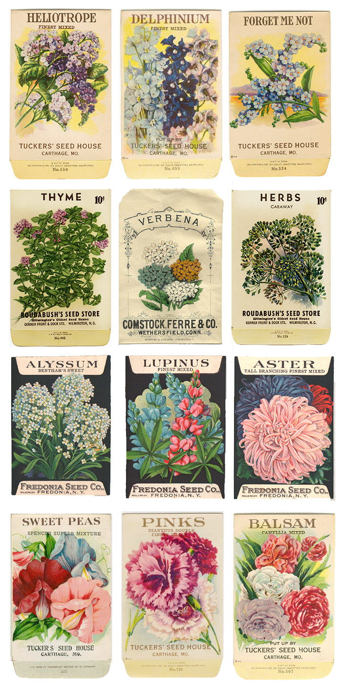 Vintage Floral Seed Packet Inspiration
